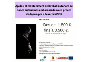 Ajudes al manteniment del treball autònom de dones autònomes embarassades o en procés d'adopció a l'exercici 2019