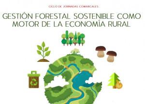 Llutxent acoge el 19 de diciembre una de las Jornadas comarcales sobre Gestión forestal sostenible como motor de la economía rural